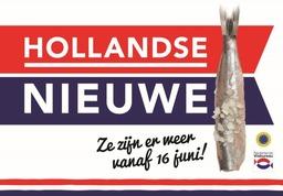 Hollandse nieuwe haring vangst 2021